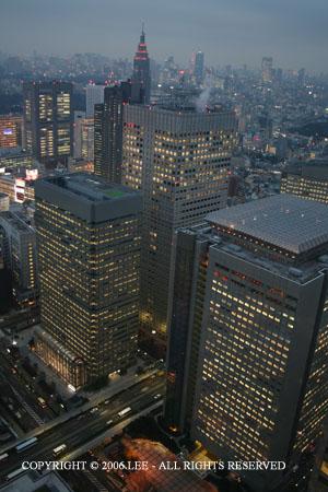 Shinjuku_skyline_night.JPG